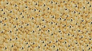 doge wallpaper hd. Fine Wallpaper Doge Wallpaper Inside Wallpaper Hd A