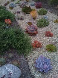 photo of urbanscapes for sustainable living sherman oaks ca united states succulent