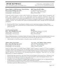 Federal Government Resume Examples Extraordinary Usajobs Gov Resume Builder Federal Resume Builder Outline Format In