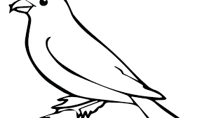 Free Printable Bird Coloring Pages Blue Bird Coloring Page Printable