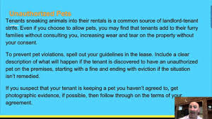 Lease Violations Common Lease Violations You Should Know According To A Houston Property Management Company