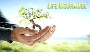 Free Life Insurance Quotes Online Beauteous Instant Life Insurance Quotes Stirring Free Life Insurance Quotes