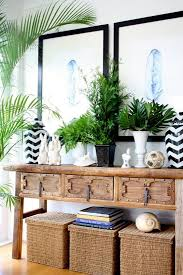 Loving the layered look of potted plants on top of the natural wood  console. The tall potted palm to the left adds a hint of drama.
