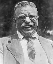 Image result for picture of theodore roosevelt