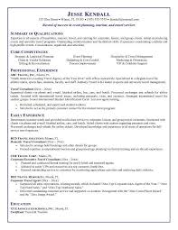 sample travel agent resume