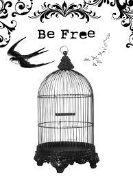 birdcage clipart caged bird