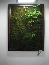 Moss art: growing a masterpiece | The Japan Times