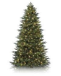 8 to 9 Foot Artificial Christmas Trees | Balsam Hill
