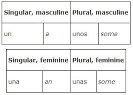 Number And Plurality