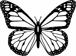 Small Picture Monarch Digital Art Gallery Monarch Butterfly Coloring Page at