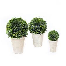 Decorative Boxwood Balls Decorating Preserved Boxwood In Ball Design Hanged On Black Stand 3
