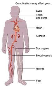 Gestational Diabetes ppt     Gestational Diabetes   Diabetes Mellitus Pregnancy Blogs