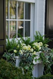 Flower Window Box Designs 15 Gorgeous Window Box Ideas For Spring