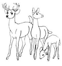 Small Picture Nicoles Free Coloring Pages Dear to me Deer coloring pages