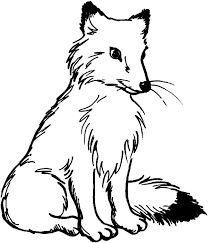 Small Picture Coloring Pages Animals Fox Coloring Pages Arctic Fox Coloring