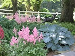 Small Picture 38 best SHADE GARDEN WOODS EDGE images on Pinterest Shade garden