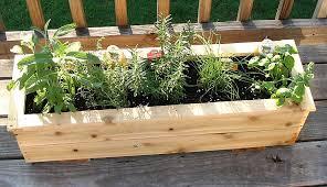 Small Picture Box Garden