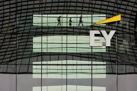 Michael C Daily Design Consultants Llc Ey Luxembourg Strong Growth Of Turnover By 8 3 To 236