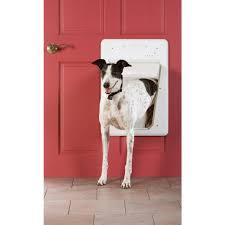 electronic dog doors. Nifty See Plexidor Electronic Dog Doors O