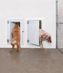 dog pet door