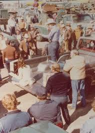1980 0321 houston lighting power rene bates 8