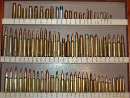 20 Disclosed Ammunition Caliber Chart