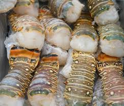 Raw Frozen Lobster Tail For Sale Stock ...