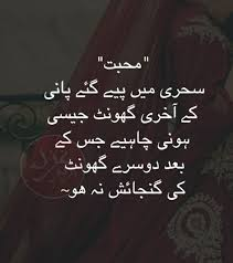 Funny Quotes About Love In Urdu Daily Motivational Quotes