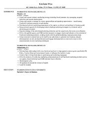 Resume Format Marketing Government Contracts Attorney Sample Resume