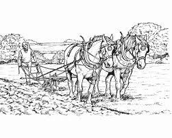 Disegno Cavallo Da Coloraredisegno Pony Da Colorare