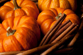 Image result for fall pumpkin pictures