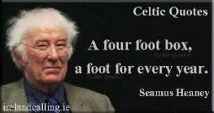 essay on mid term break by seamus heaney  essay on mid term break by seamus heaney