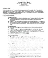 Summary Of Achievements Resume Examples Summary Of Achievements ...