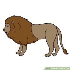 lion drawing color. Beautiful Lion Image Titled Color Step 10 1 Inside Lion Drawing