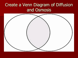 Venn Diagram For Osmosis And Diffusion Creative Venn Diagram And Diffusion Osmosis S7l2 Ppt
