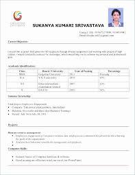 Pursuing Mba Resume Format