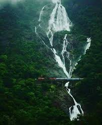 Image result for dudhsagar