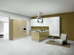 Designs Of Modular Kitchen Tag For L Shaped Small Modular Kitchen Designs Nanilumi
