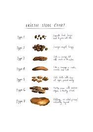 Stool Chart Images Bristol Stool Chart Illustrated