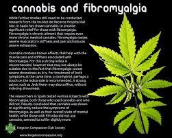 marijuana helps migraines