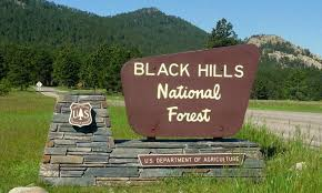 「the Black Hills National Forest of South Dakota」の画像検索結果