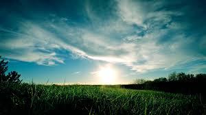 grass field sunrise. Wonderful Sunrise Download For Grass Field Sunrise