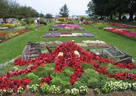 Small Picture Flower Garden Design Ideas Archives Home Joy Closeup Of The Plants