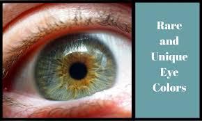Hazel Eye Chart 6 Rare And Unique Eye Colors Owlcation