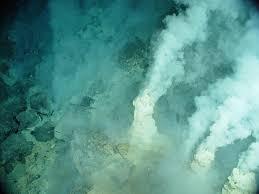 Resultado de imagen de Vida en aguas de Acidez extrema o alcalinidad extrema