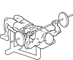 Incline Barbell Bench Press Instructions And Video  Weight Decline Barbell Bench