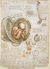 As quoted below, he was concerned by some of his designs falling into the wrong hands. Leonardo Da Vinci Wikipedia