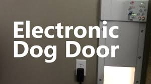 electronic dog doors. Electronic Dog Doors L