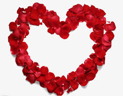 rose heart shaped frame rose clipart frame clipart rose png image and