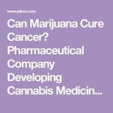 can marijuana cure brain cancer